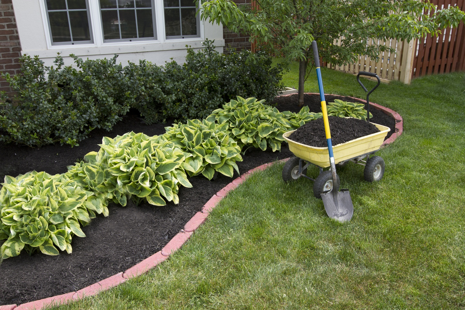 Green Tree Columbus landscaping flower bed clean up mulch